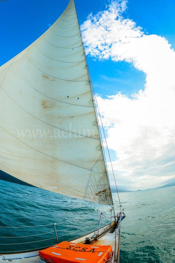 Sail 7356